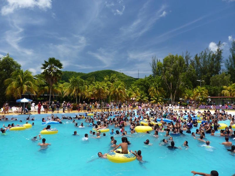 Things To Do In Rincon Puerto Rico With Kids